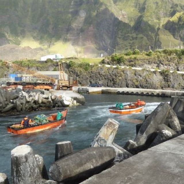 Fishing boats arriving at port