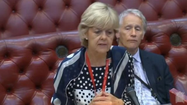 Labour peer Baroness Hayter sacked for Jeremy Corbyn criticism