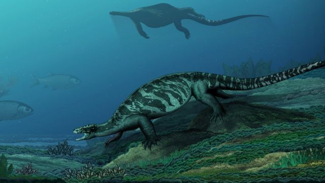 Artist's impression of the earliest known stem turtle
