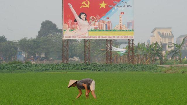 Việt Nam có 23 triệu nông dân trong số gần 70 triệu dân sống ở nông thôn