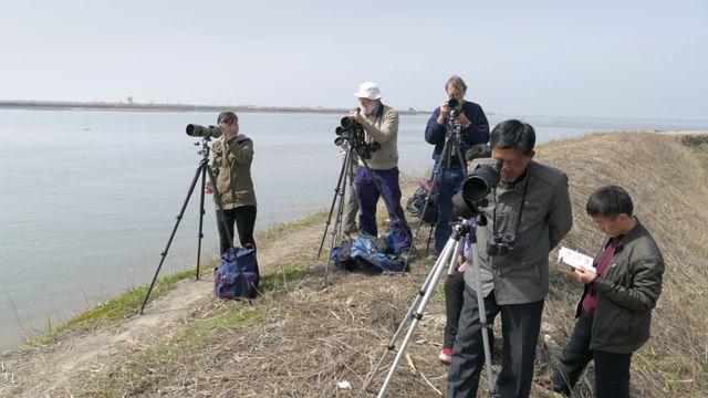 Observadores de ave en Mundok, Corea del Norte.