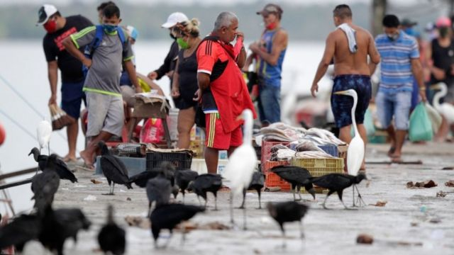 Comerciantes e pescadores em área portuária, na beira do rio, em Belém; vê-se caixas, peixes e garças em volta