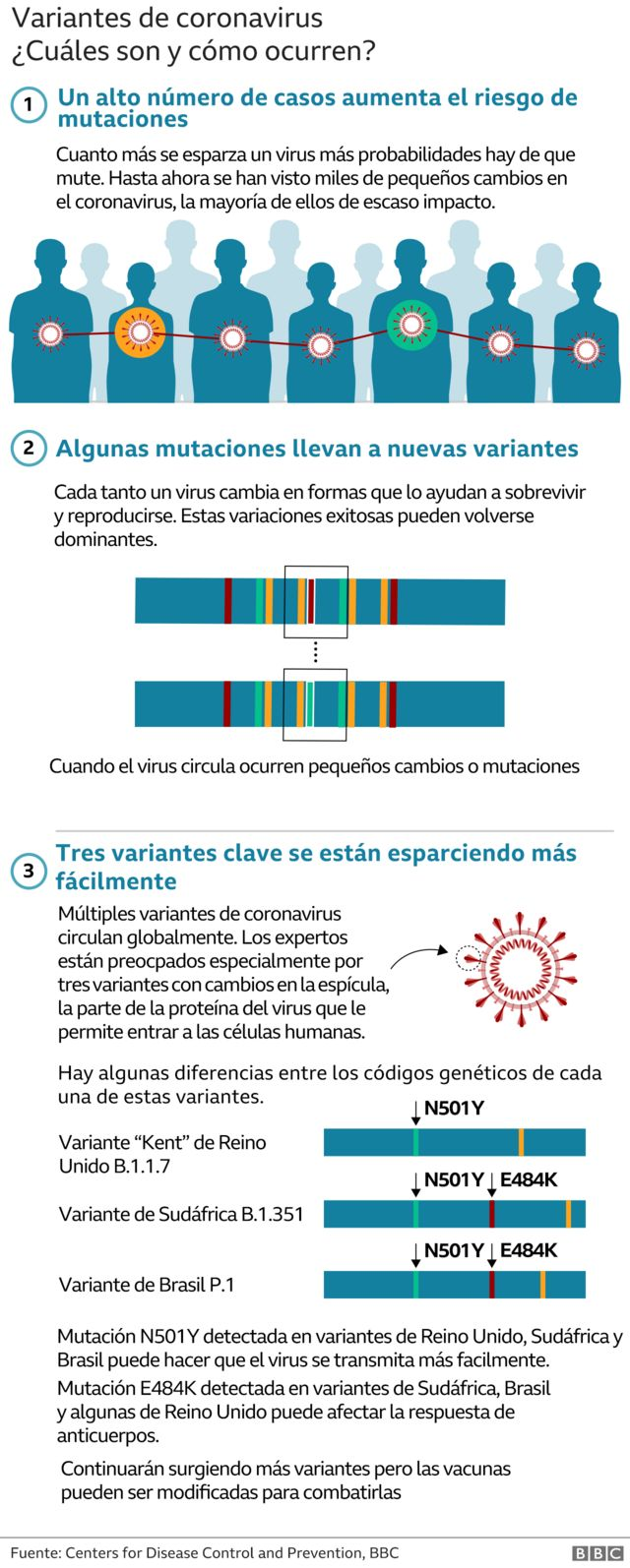 Gráfico sobre cómo surgen las variantes de coronavirus