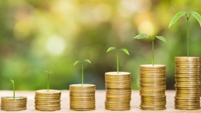 Ilustração de árvores nascendo em moedas