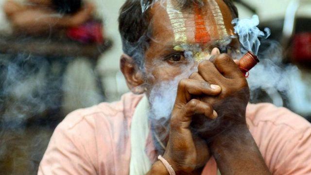 印度大麻(图片来源:Diptendu Dutta/Stringer/Getty)