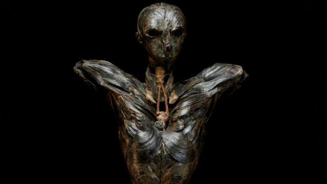 Adão, a escultura que envenenou a artista (Cortesia de Gillian Genser)