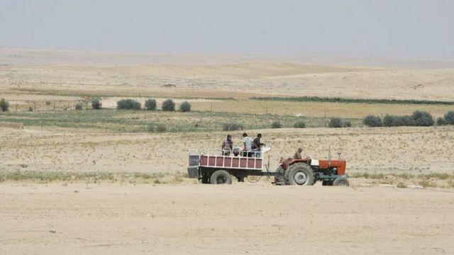 Agricultores dirigindo um trator na região de Hasaka, na Síria, afetada pela seca, em 2010