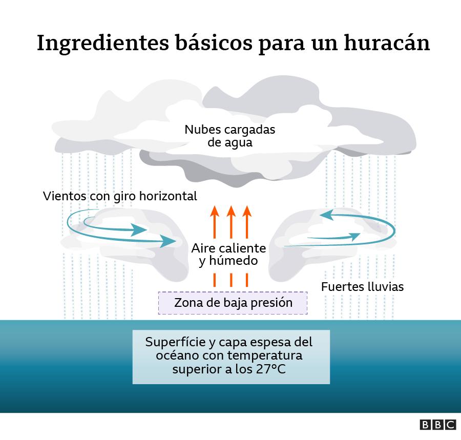 Cómo Se Forman Los Huracanes Y Por Qué Son Tan Frecuentes En México Estados Unidos Y El Caribe Bbc News Mundo