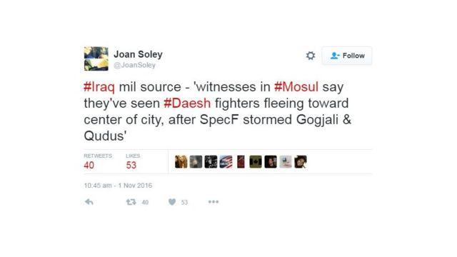 Joan Soley 2