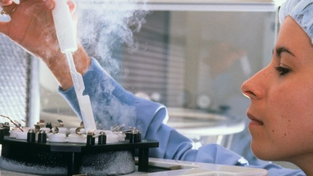 Technician for one IVF laboratory freezes sperm and eggs for storage