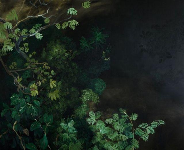 obra 'Into the Shadows', que mostra plantas durante a noite
