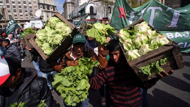 Productores cargan cajones con verduras.