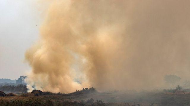 Grande fumaça lançada de área verde do Pantanal