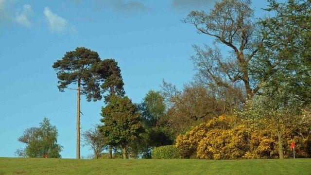 Поле для игры в гольф в Барнсдейле