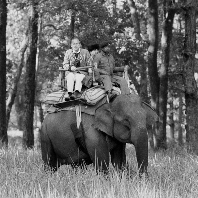 Принц Філіп верхи на слоні