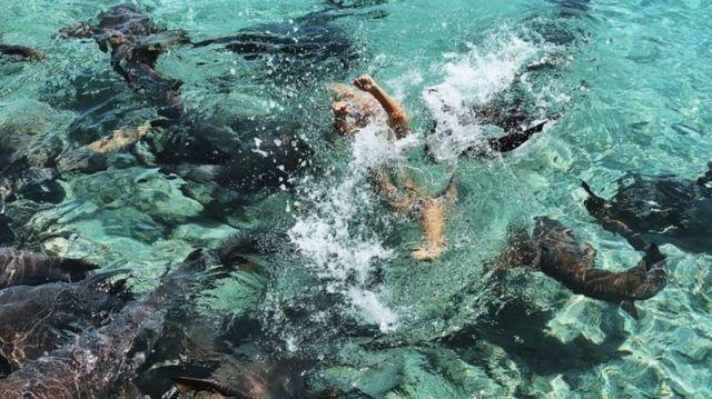 카타리나는 물에서 빠져나오려고 애썼다