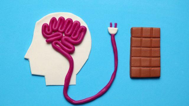 El cerebro y otros órganos del cuerpo necesitan energía para funcionar correctamente.