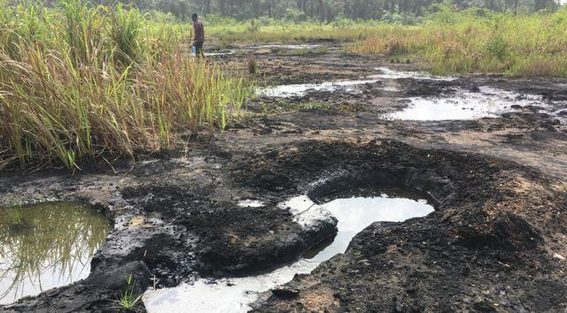 Área rural onde ocorreu derramamento de petróleo