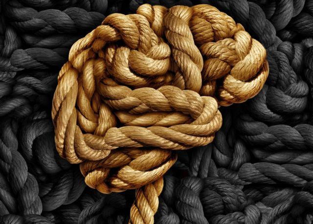 Cerebro en soga