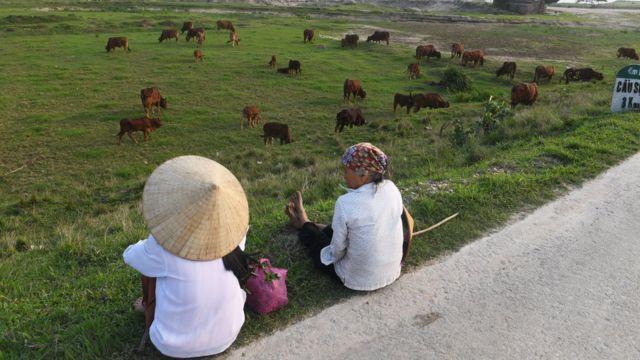 Nông dân ở Bắc Ninh, Việt Nam