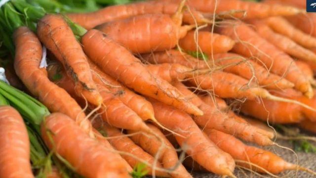 Eso Carrot