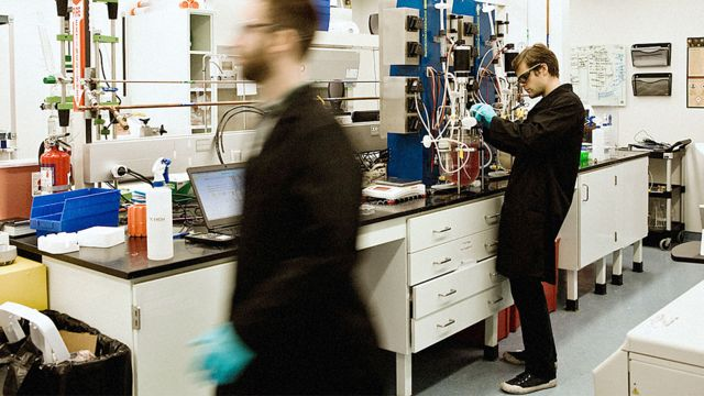 В лабораториях Modern Meadow