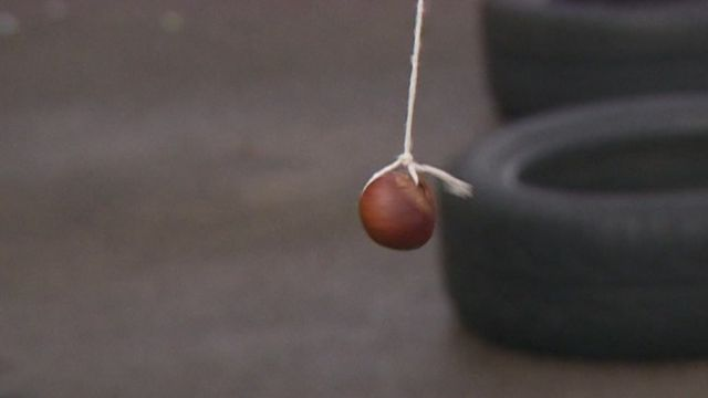 A conker on a string