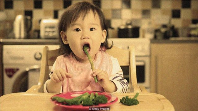 或许可以利用人们的可塑记忆,来改变他们喜欢和不喜欢什么食物,进而改变饮食习惯。