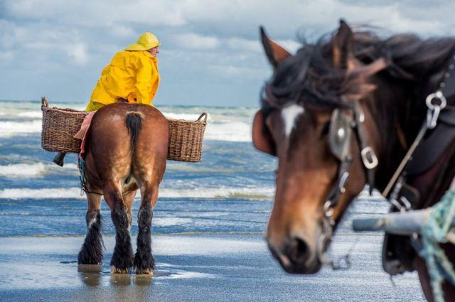 Un pescador montado en un caballo