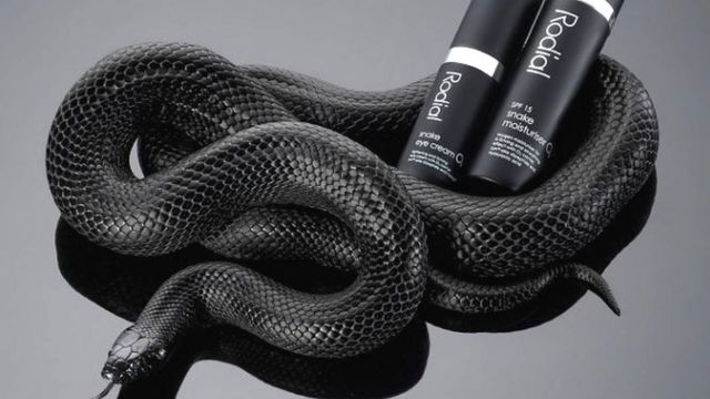 Productos con una serpiente.