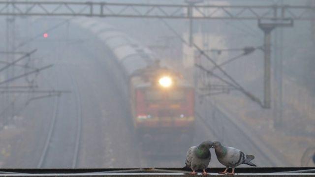 11 दिसंबर से 15 दिसंबर के बीच 958 ट्रेनें पूरी तरह से और 306 ट्रेनें आंशिक रूप से रद्द की गई हैं.