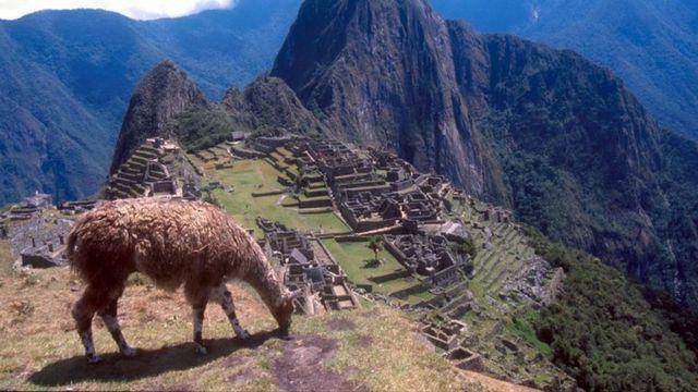 Tourist dies in Machu Picchu taking photo