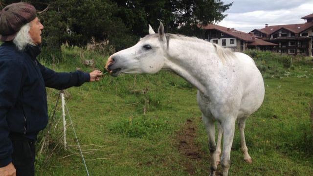 Сева и лошадь