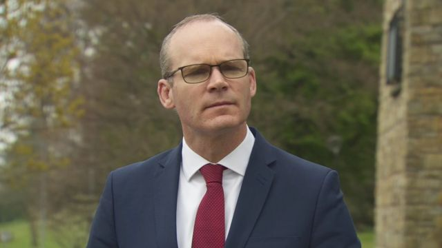 Brexit: Coveney in pledge on European health insurance cards