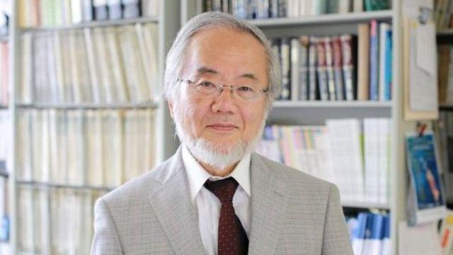 जापान के वैज्ञानिक योशिनोरी ओसुमी