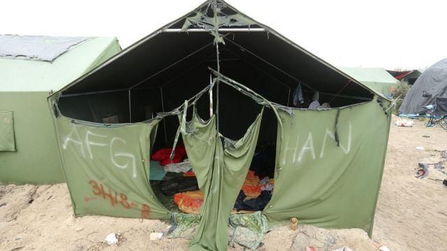 مخيم الغابة