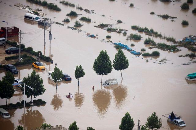 很多车辆浸泡在水中