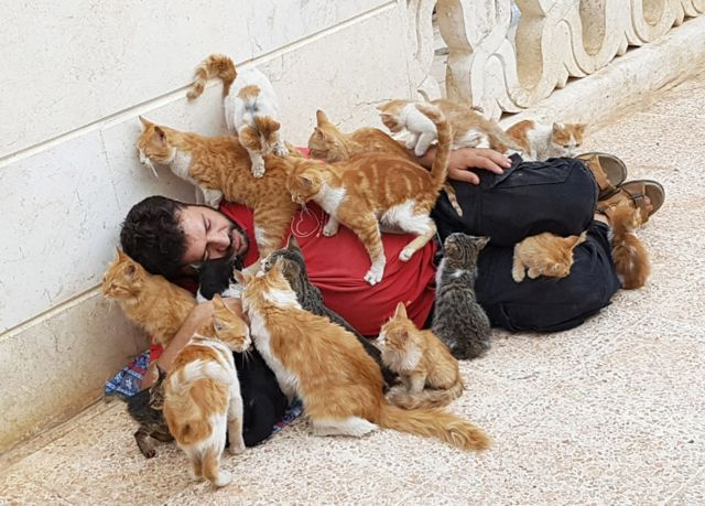 Kisah Penyayang Kucing Dari Aleppo Suriah Bbc News Indonesia