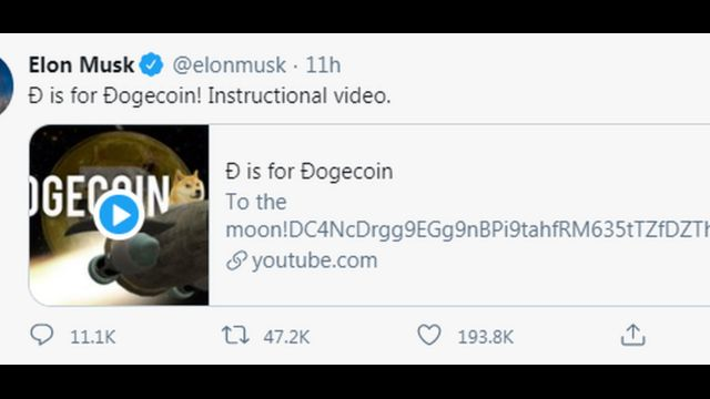 Elon Musk support for crypto