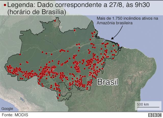 grafico sobre amazonia