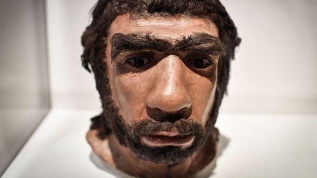 Reconstrucción del rostro de un neandertal