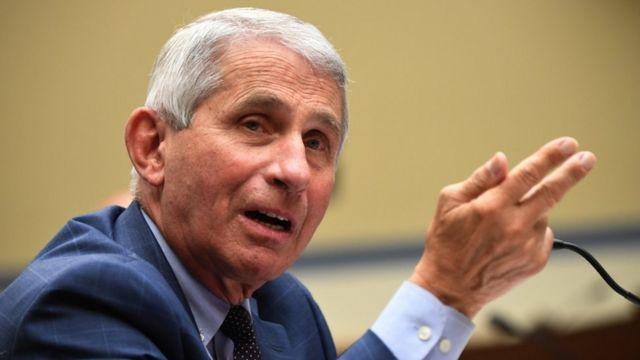Dr Anthony Fauci testifying to Congress in July