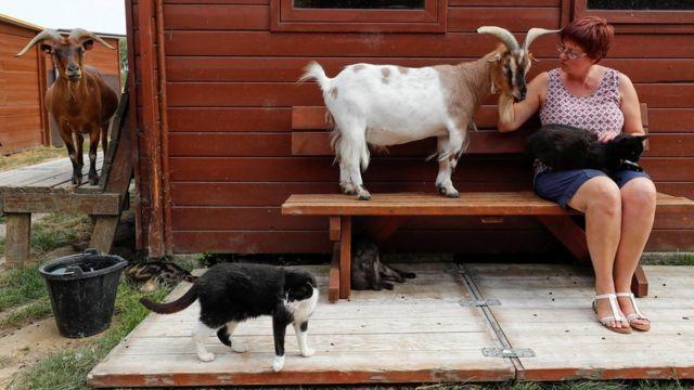 Valeri Liks sa životinjama