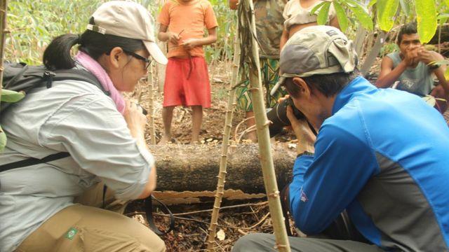 Expedição de investigação de cogumelos Sonöma