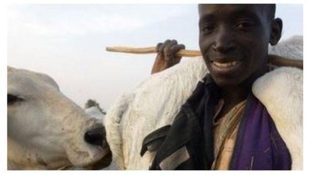 나이지리아는 가축과 연관된 공동체 간의 분쟁으로 수년 동안 고통을 겪어왔다.