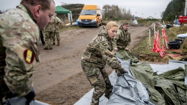 Members of Danish health authorities assisted by members of the Danish Armed Forces dispose dead mink in a military area near Holstebro in Denmark, 09 November 2020