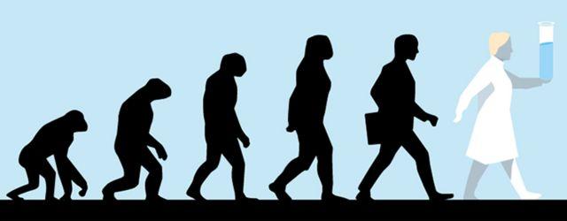 Ilustración de la evolución