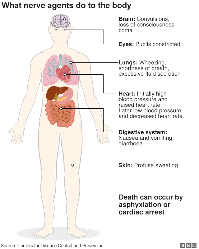 What nerve agents do to the body