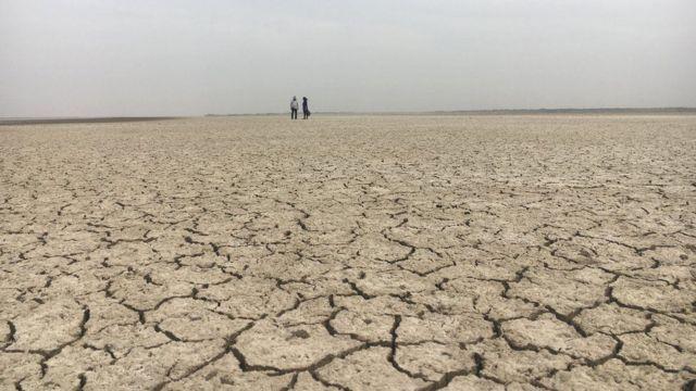 잇따른 가뭄으로 피해를 본 농가가 늘고 있다