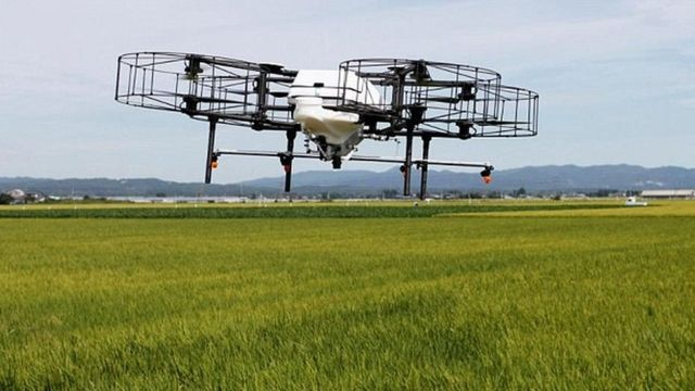 Drone flying over a rice crop in Japan